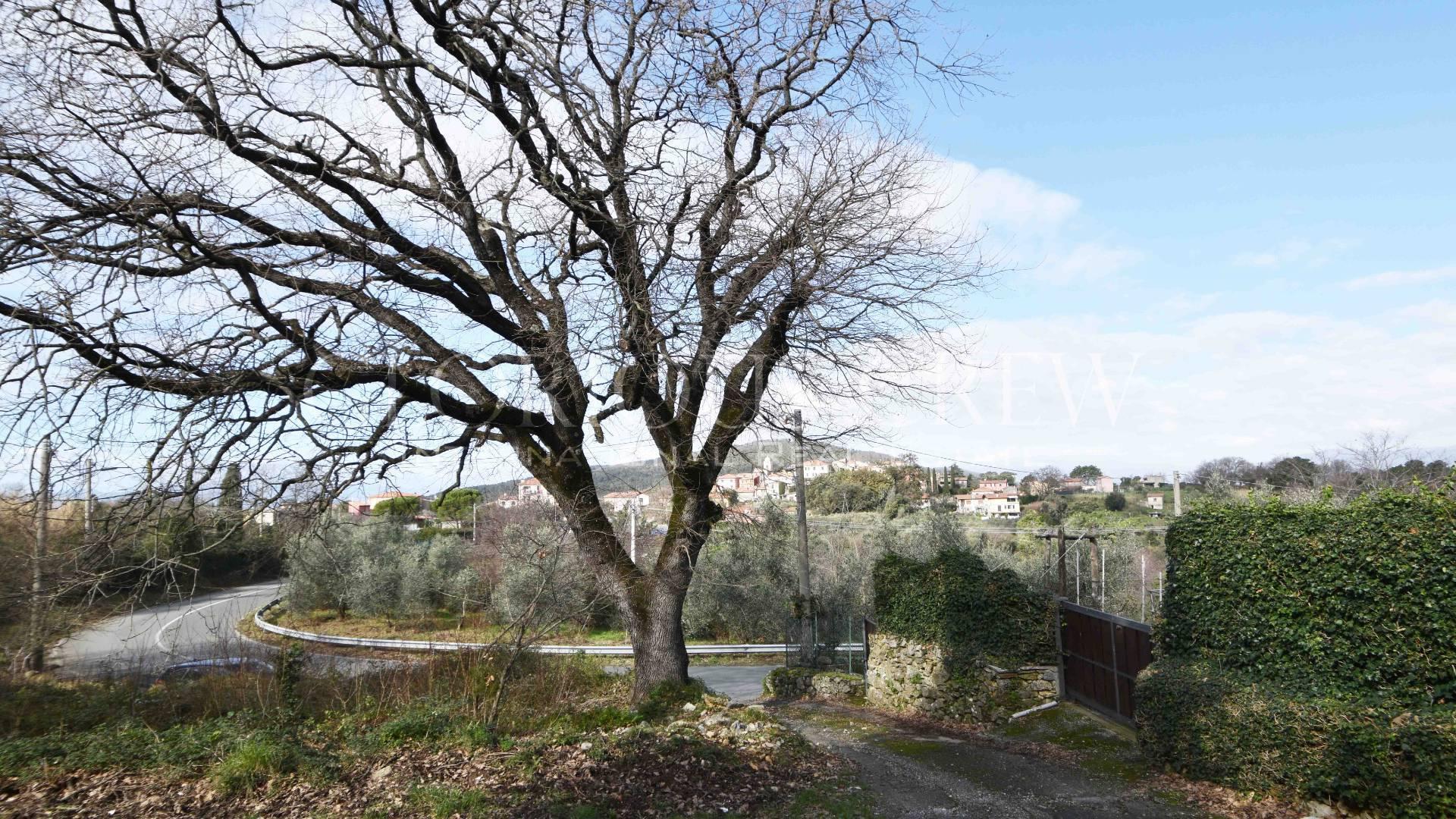 Villa in Vendita a Ameglia: 5 locali, 220 mq - Foto 13