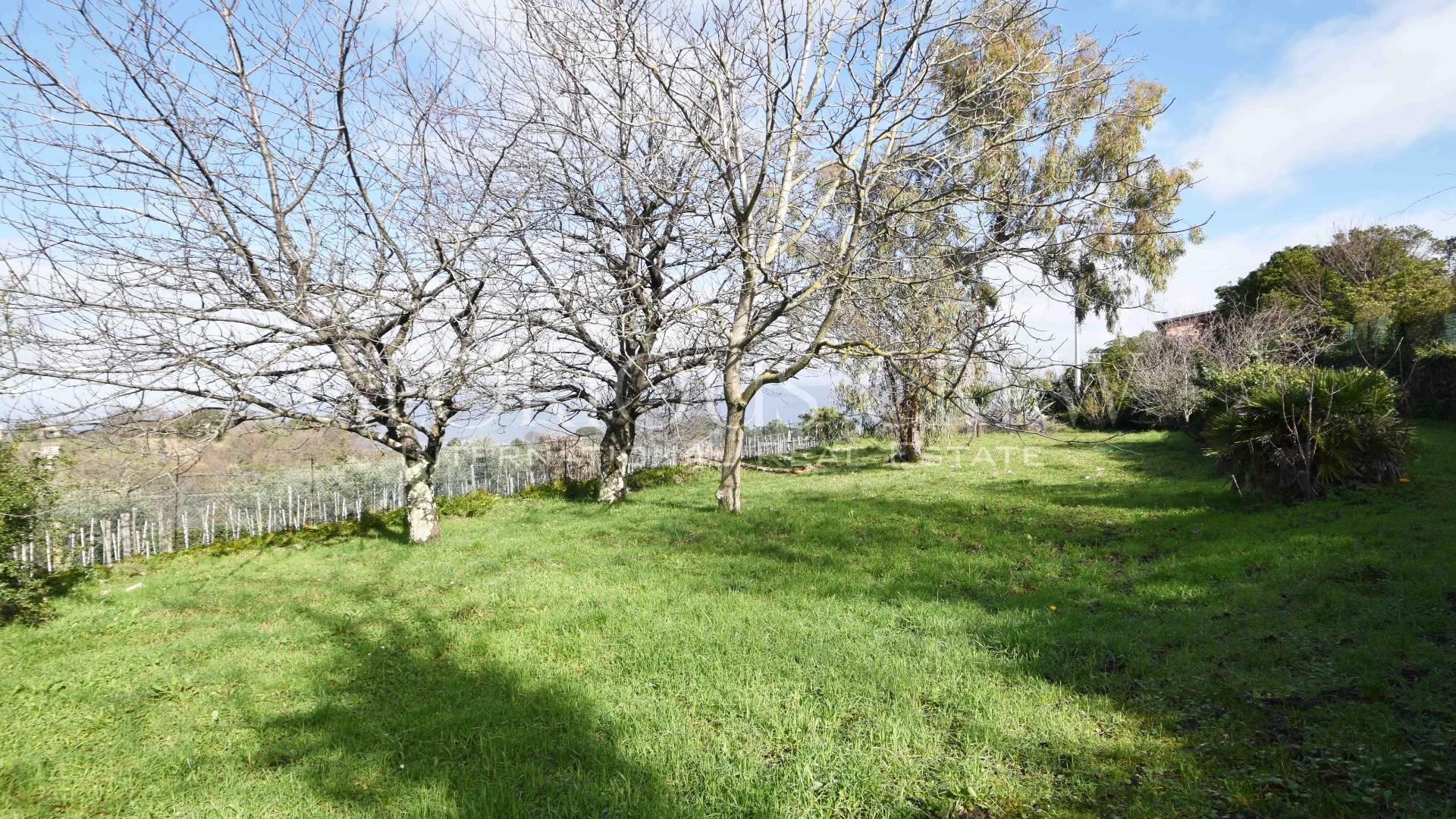 Villa in Vendita a Ameglia: 5 locali, 220 mq - Foto 15