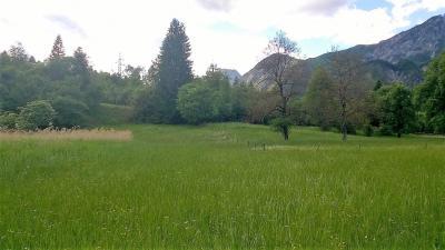 Terreno in Vendita a Malborghetto Valbruna