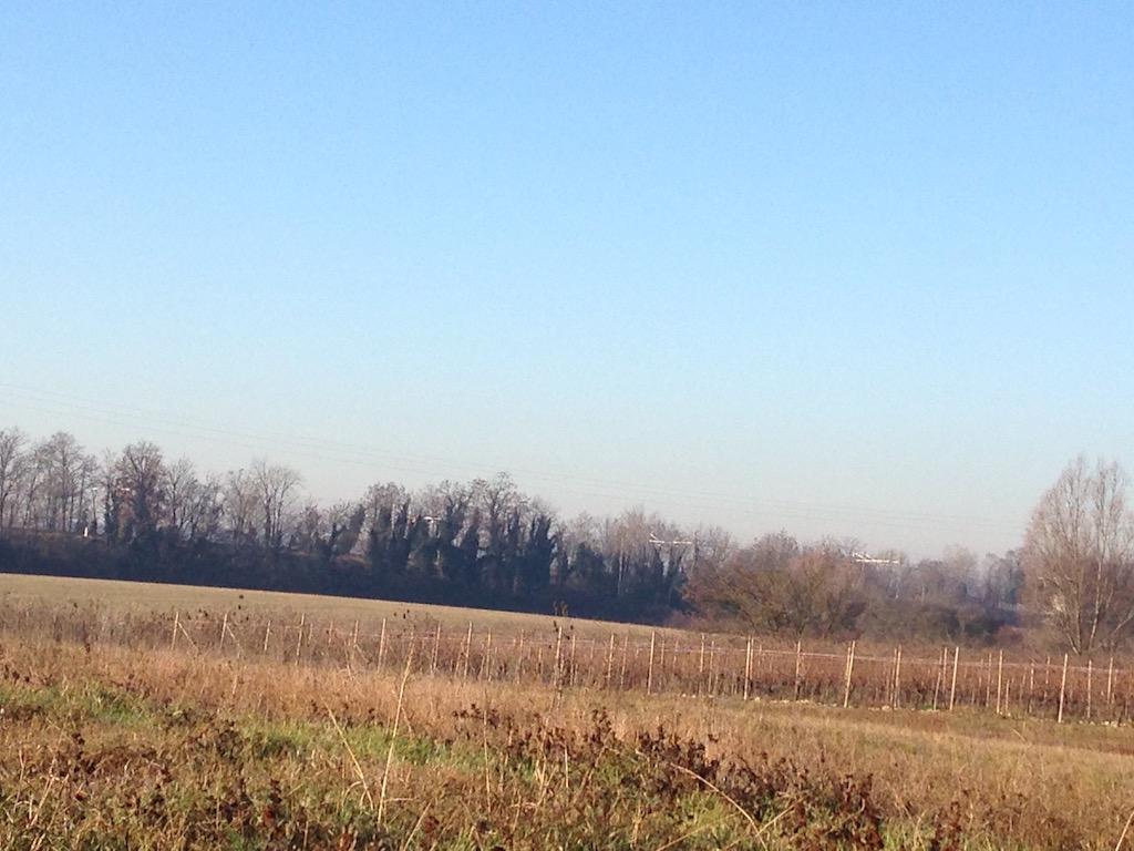 Terreno Agricolo in vendita a Desenzano del Garda, 9999 locali, zona Località: SanMartinodellaBattaglia, prezzo € 850.000   CambioCasa.it