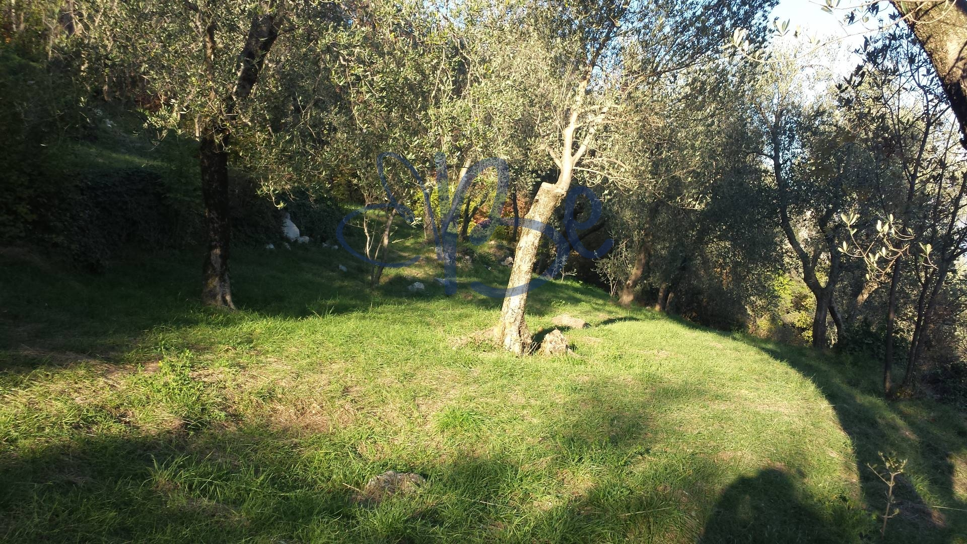 Terreno Agricolo in vendita a Tignale, 9999 locali, zona Zona: Piovere, prezzo € 25.000 | CambioCasa.it