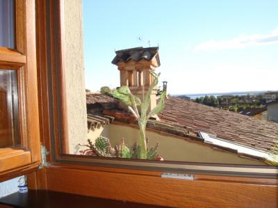 Bed and breakfast in Vendita a Padenghe sul Garda