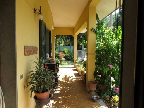 Casa indipendente in Vendita a Massarosa