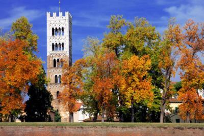 Uffici in Vendita a Lucca