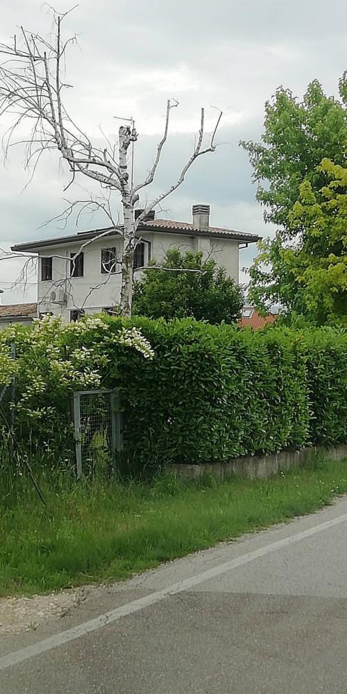 Casa singola in Vendita a Mareno di Piave