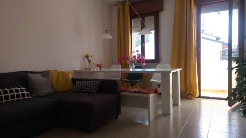 Appartamento in Affitto a Santa Lucia di Piave