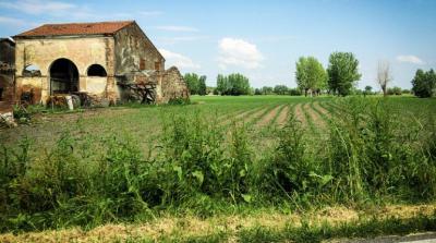 Terreno edificabile in Vendita a Castello di Godego