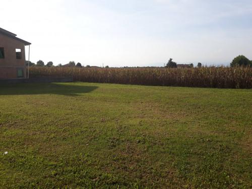 Terreno edificabile in Vendita a San Giorgio in Bosco
