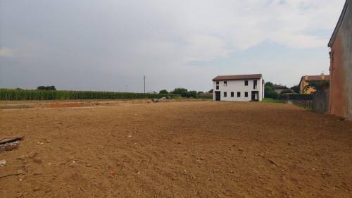 Terreno edificabile in Vendita a Cittadella