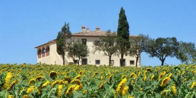 Appartamento in Vendita a Cortona