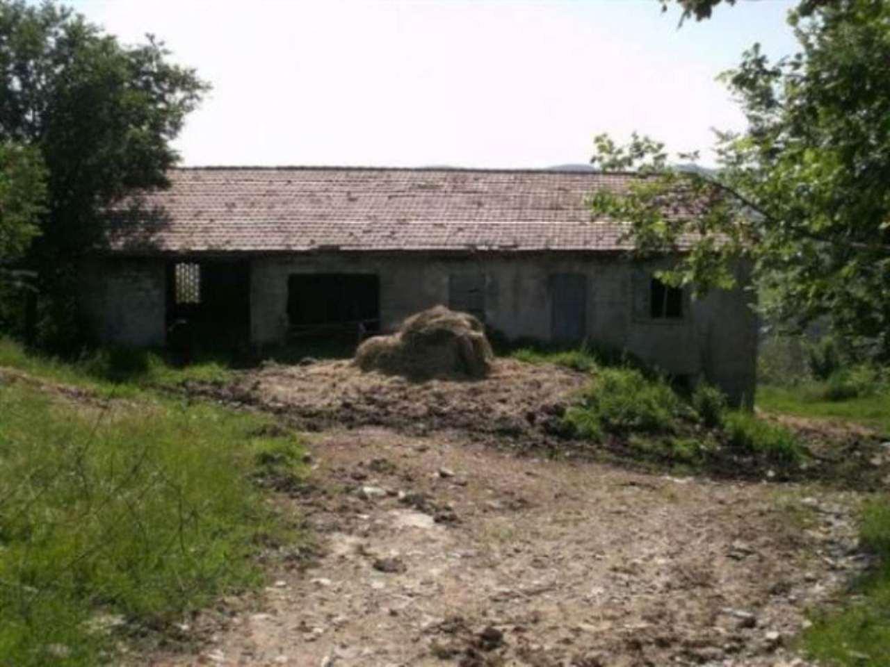 Terreno Agricolo in Vendita a San Leo