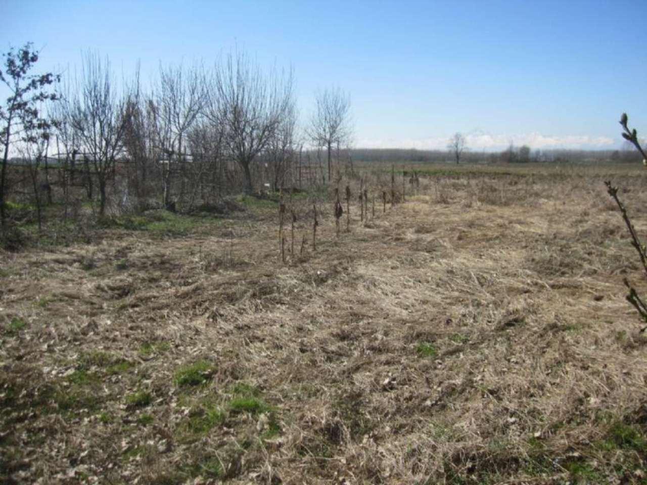 Terreno Agricolo in Vendita a Carignano