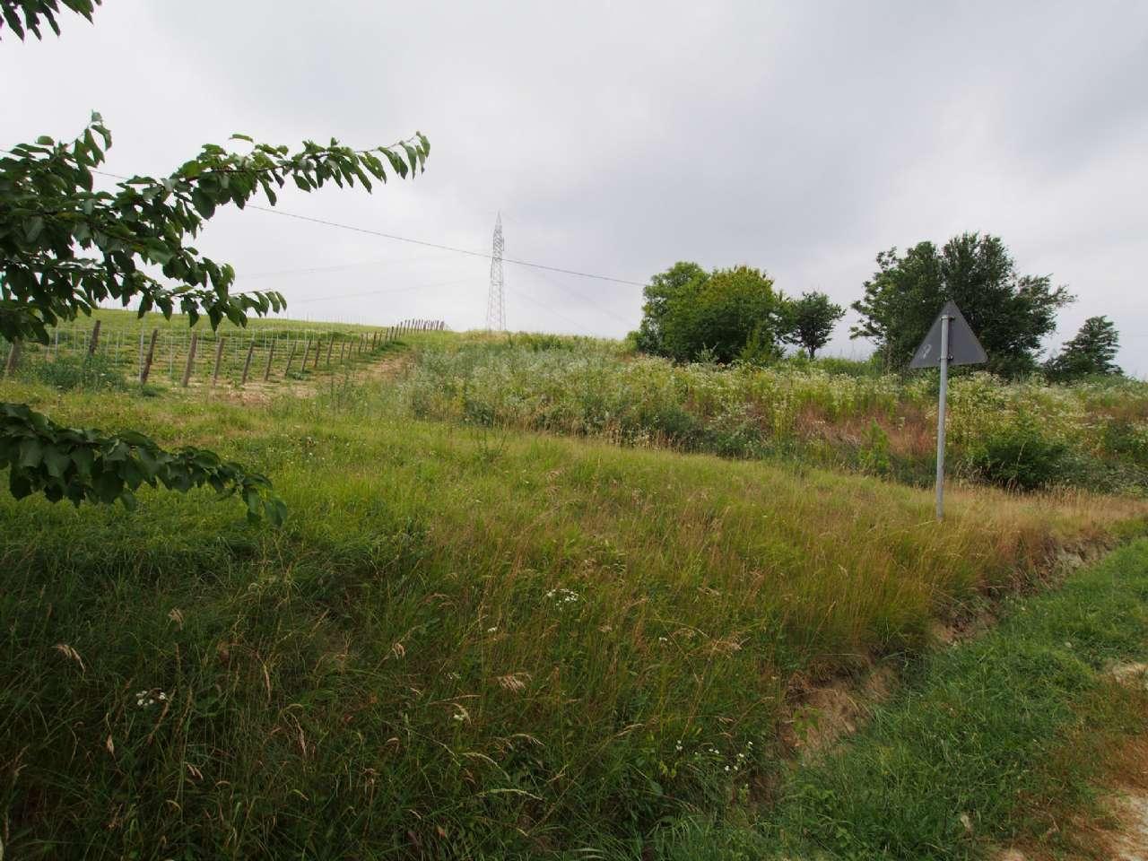 Terreno residenziale in Vendita a Cassinasco