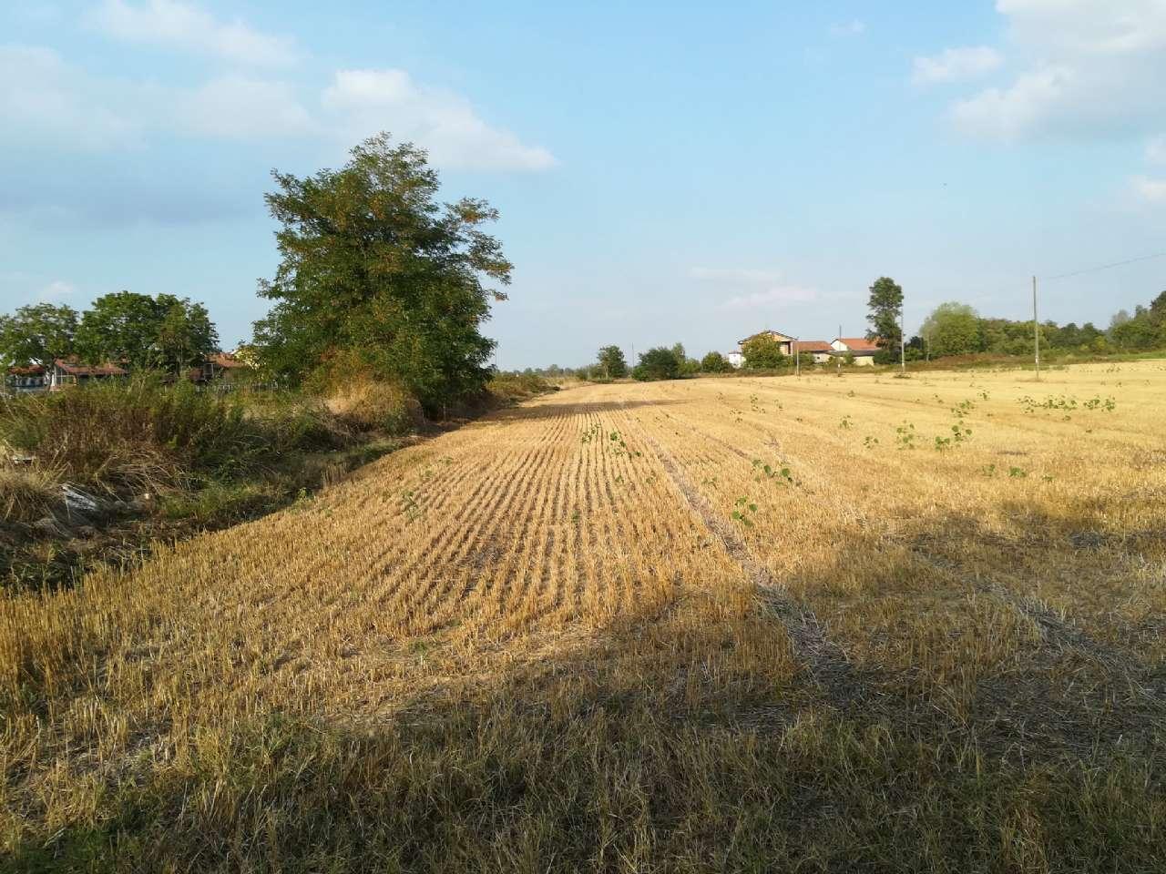 Terreno artigianale - terziario in Vendita a Pianfei
