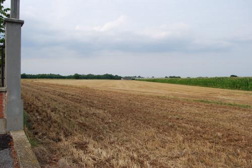 Terreno Agricolo in Vendita a Rivalta di Torino