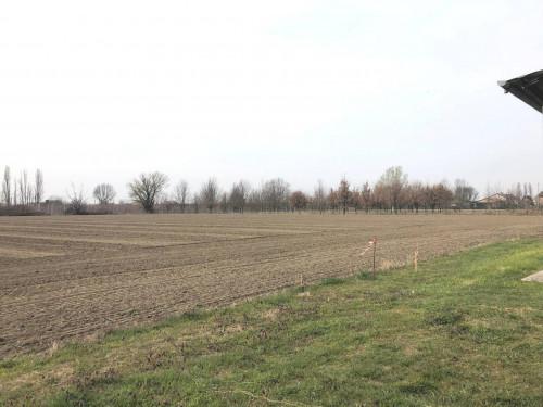 Terreno Agricolo in Vendita a Ferrara