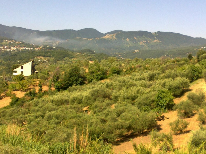Terreno Agricolo in vendita a Foglianise, 9999 locali, prezzo € 12.000 | CambioCasa.it