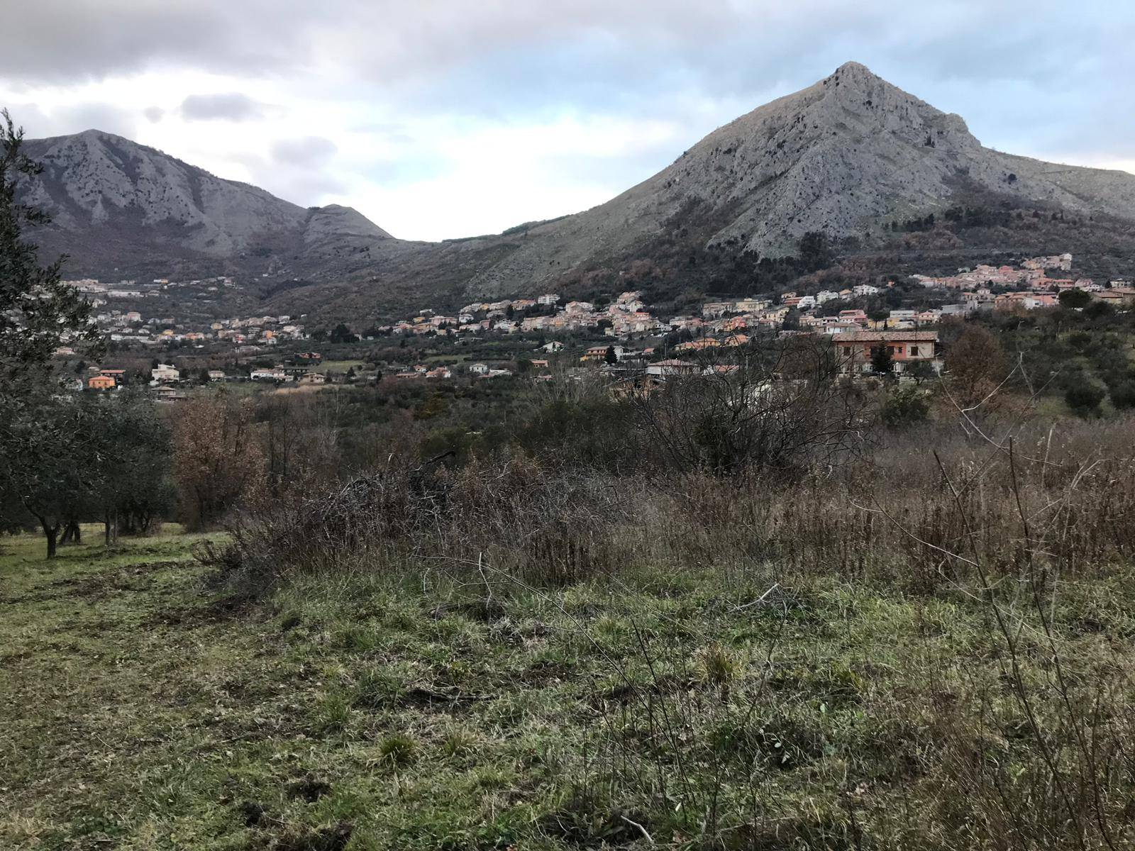 Terreno Agricolo in vendita a Foglianise, 9999 locali, prezzo € 39.000   CambioCasa.it