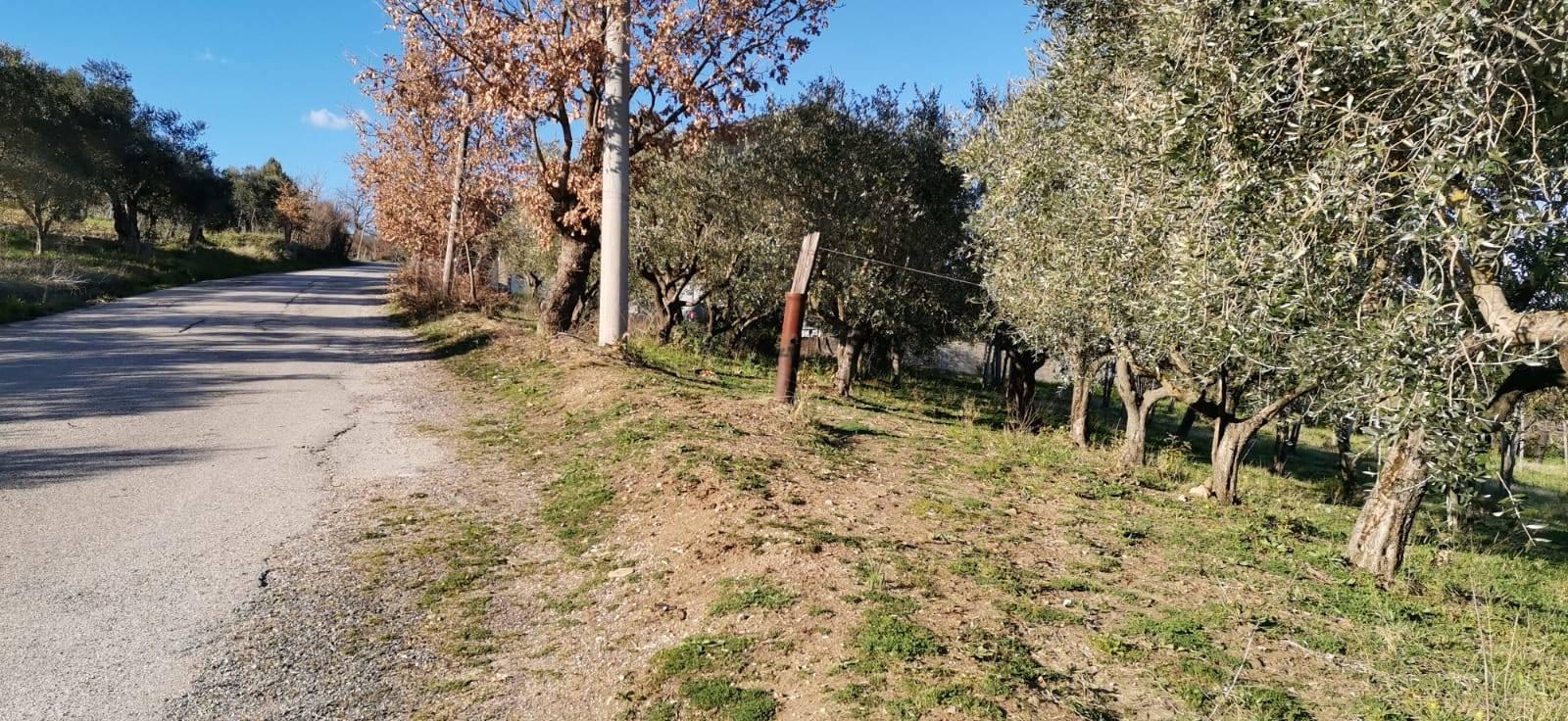Terreno Agricolo in vendita a Foglianise, 9999 locali, prezzo € 30.000 | CambioCasa.it