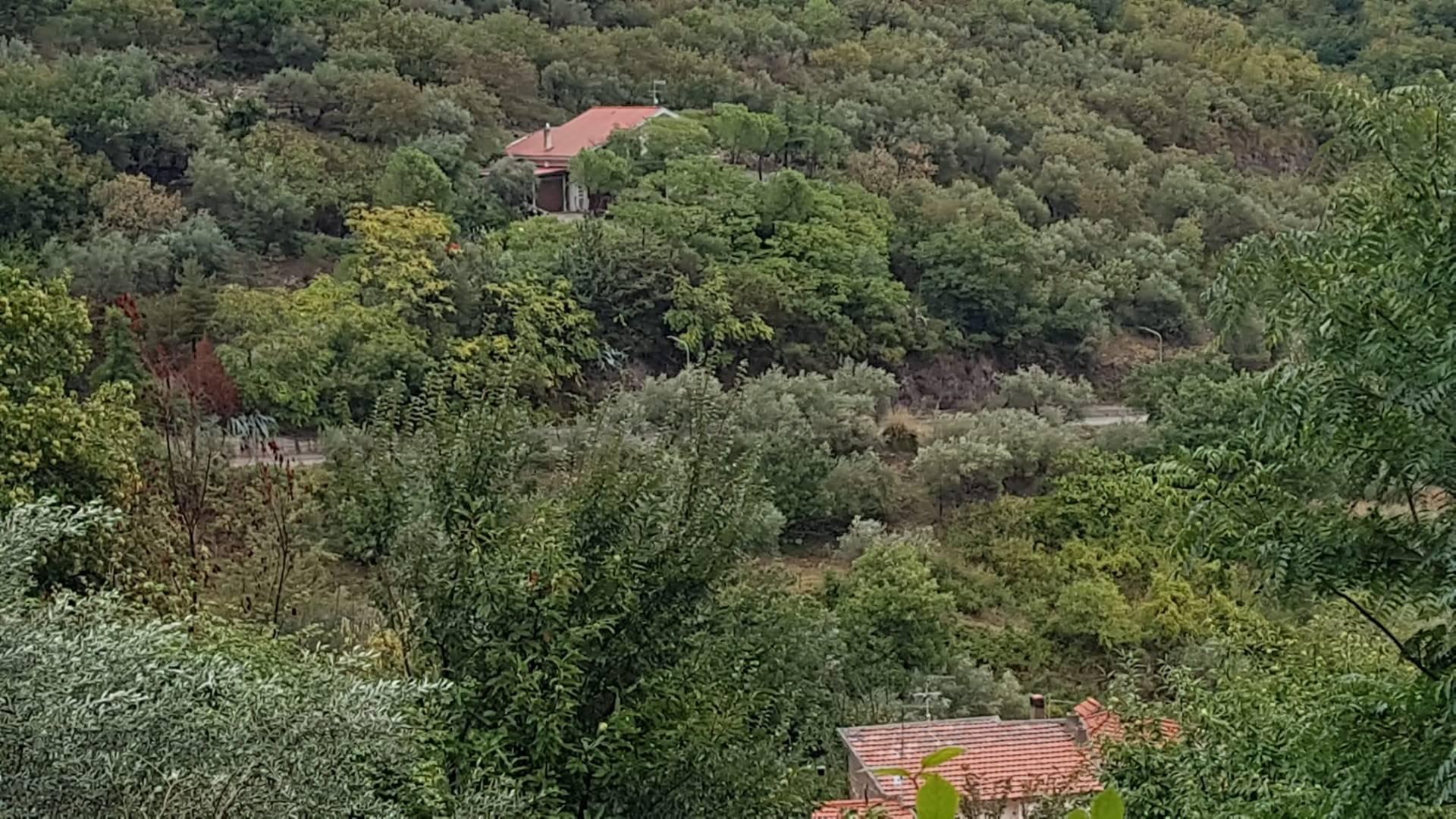Foto - Terreno In Vendita Cautano (bn)