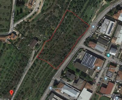 Vai alla scheda: Terreno Agricolo Vendita - Verona (VR) | Quinzano - Codice -GF161