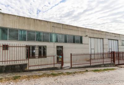 Vai alla scheda: Laboratorio   Affitto - San Pietro in Cariano (VR) - Codice -vdf139