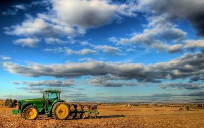 Terreno Agricolo in Vendita a Vedelago