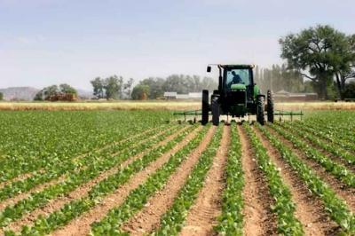 Terreno Agricolo in Vendita a Ponzano Veneto