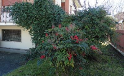 Casa/Villa in Vendita a Treviso