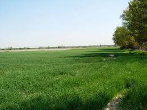 Terreno edificabile in Vendita a Paese
