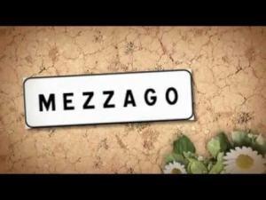 Terreni Residenziali in Vendita a Mezzago