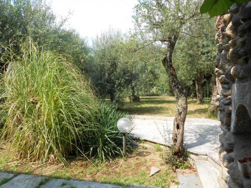 Villa singola in Vendita a Seravezza