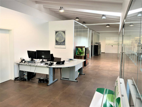 Studio / Office for Sale in Arbedo-Castione