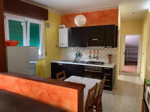 Vai alla scheda: Appartamento Affitto Campobasso