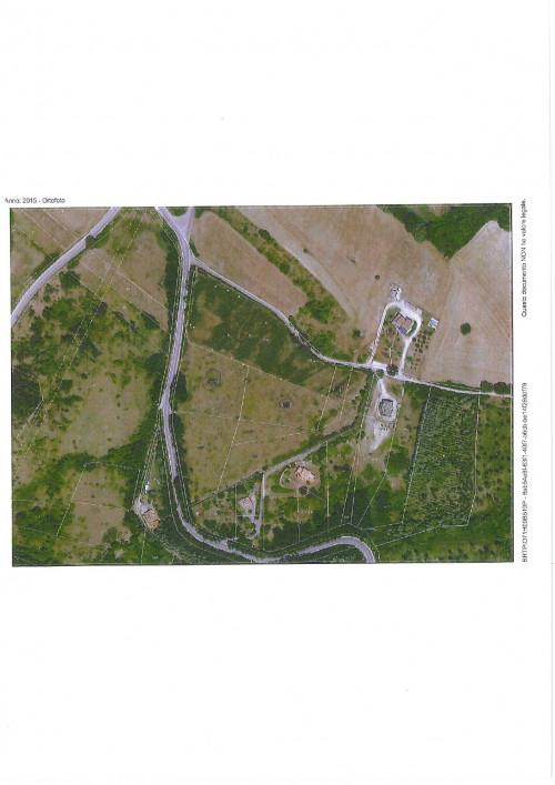 Terreno edificabile in Vendita a Vinchiaturo
