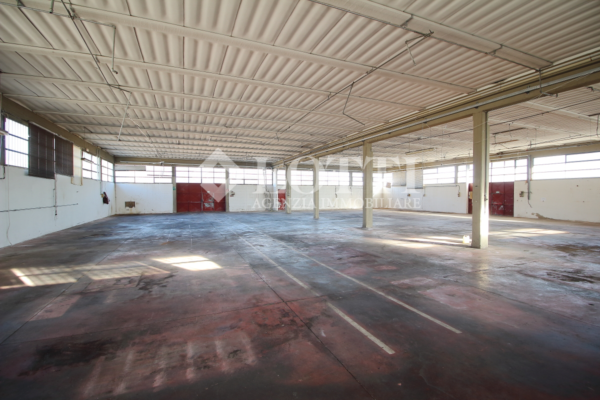 Industrial depot for sale in Calcinaia (PI)