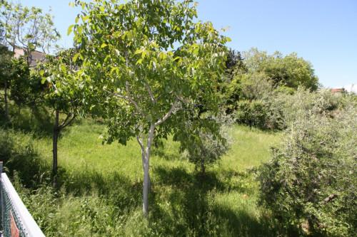 Terreno edificabile in Vendita a Monteprandone
