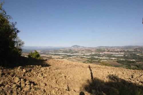 Terreno Agricolo in Vendita a Ancarano
